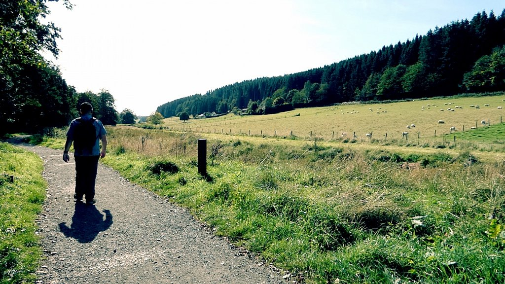 Valley-Path-to-Ellerburn-Thornton-le-Dale-to-Dalby-Forest.jpg