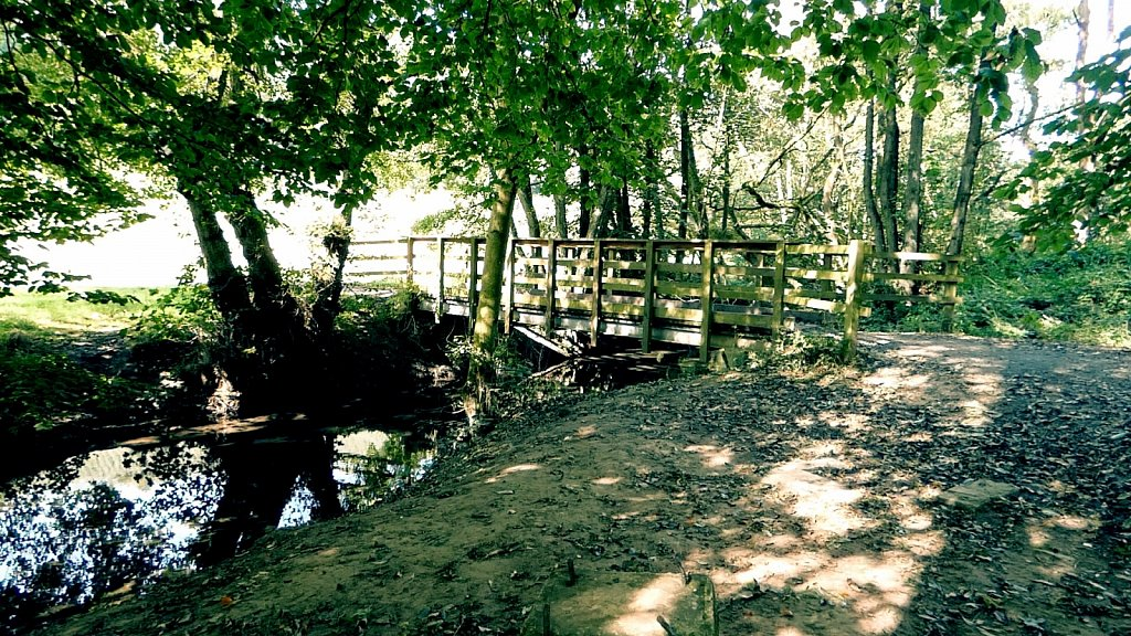 Footbridge-Thornton-le-Dale-to-Dalby-Forest.jpg