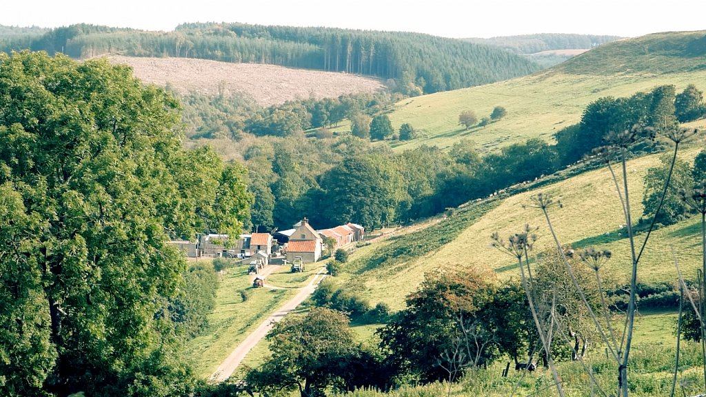 High-Papermill-Farm-Thornton-le-Dale-to-Dalby-Forest.jpg